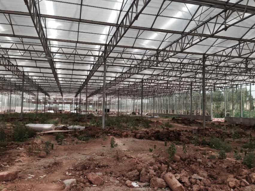 成都生态农业温室大棚